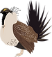 SageGrouse_Male.png