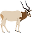 Addax.png