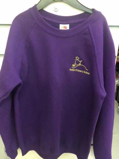 Pendle Primary sweatshirt