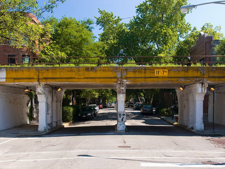 Bloomingdale Trail Guided Tour -Saturday October 7th 10:00-11:00am