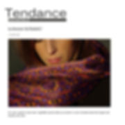 Tendance Savoie-MtBlanc article.jpg