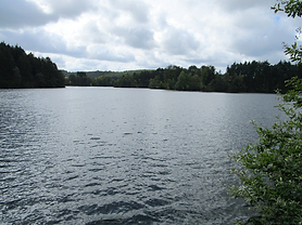 Lac_de_robertville_view.png