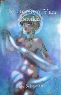 Baukis cover verkleind.jpg