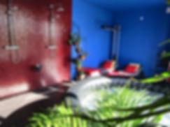 infrarood.jpg
