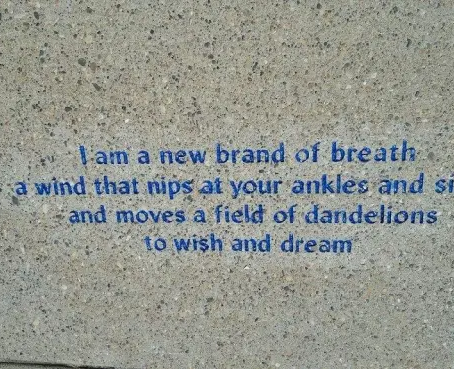 Love Letters to the World — Sidewalk Poetry in the Meadows