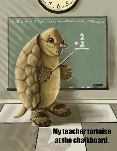 My Teacher Tortoise