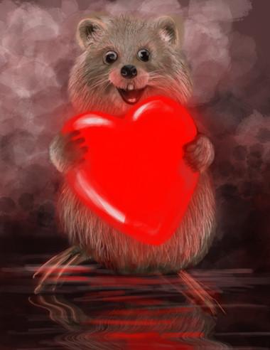 Quokka Valentine