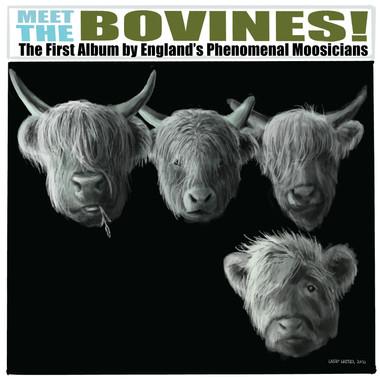 Meet The Bovines