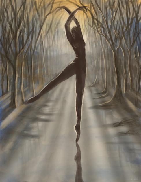 A Dancer Dancer