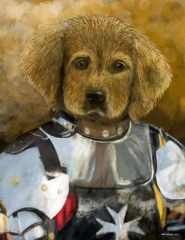 One Dog Knight