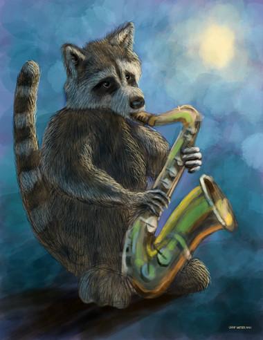 Raccoon Jazz