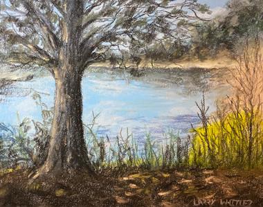 A Tree By A Lake