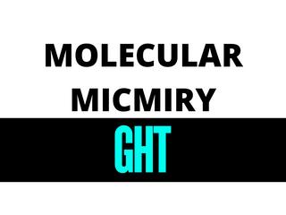 Gluten & Autoimmunity- What's the Story?