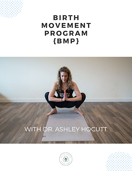 BIRTH MOVEMENT PROGRAM COVER (2).png