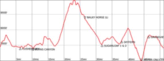 50M Elevation Profile.png