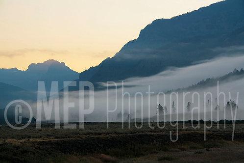 Yellowstone National Park (3)