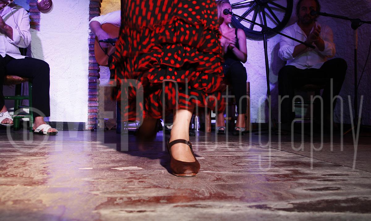 Flamenco Dancers (1).jpg