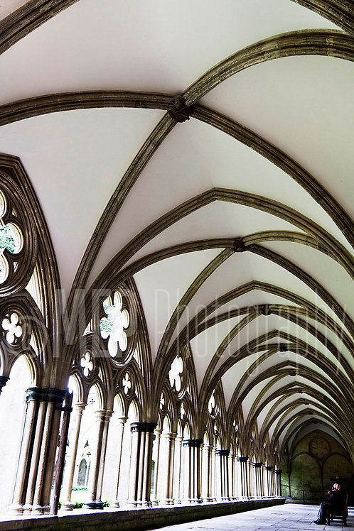 Salisbury Cathedral (7)