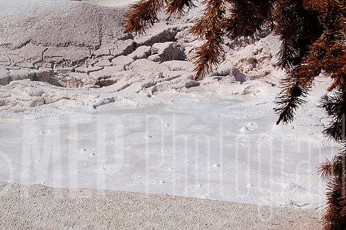Yellowstone National Park (5)