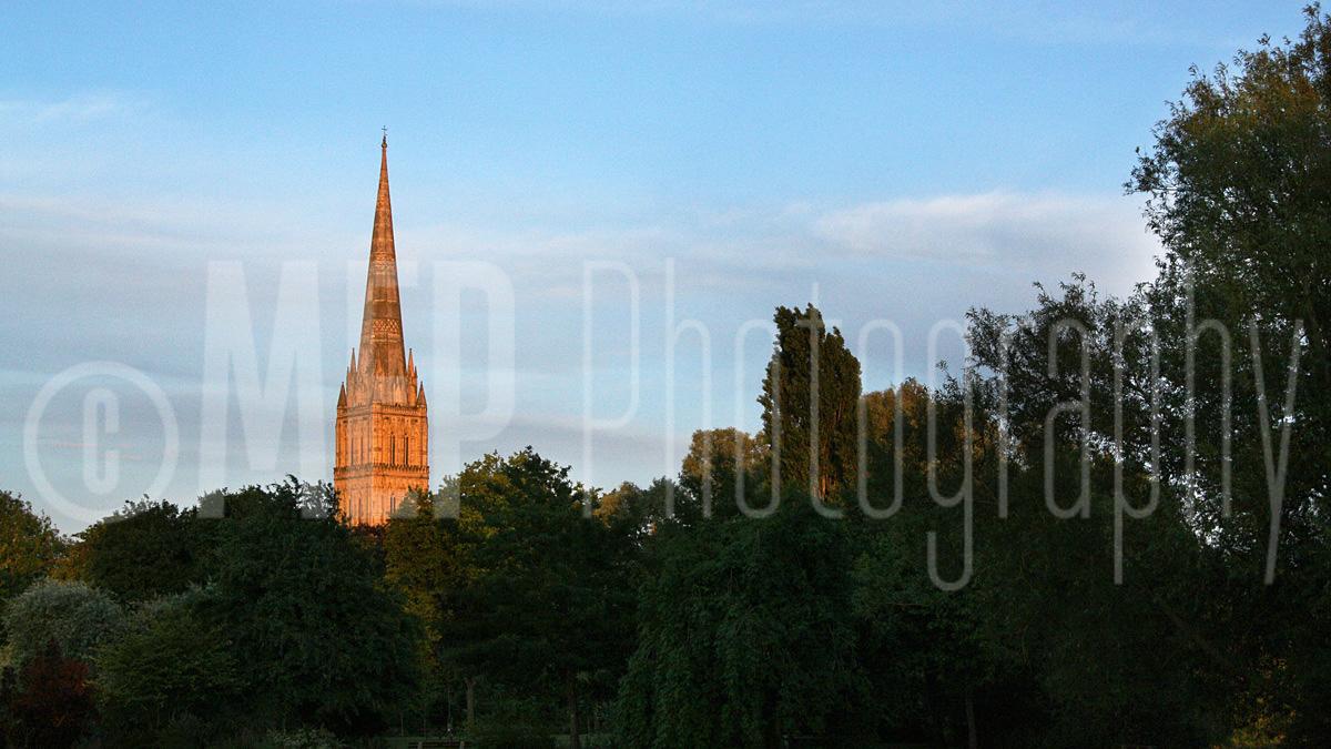 Salisbury Cathedral (2).jpg