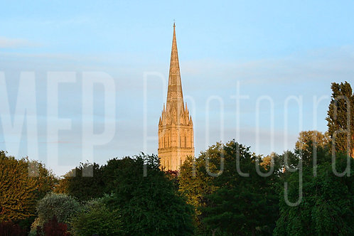 Salisbury Cathedral (3)