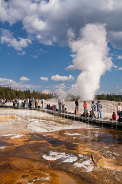 Yellowstone National Park (10).jpg