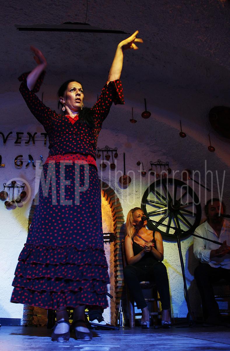 Flamenco Dancers (2).jpg