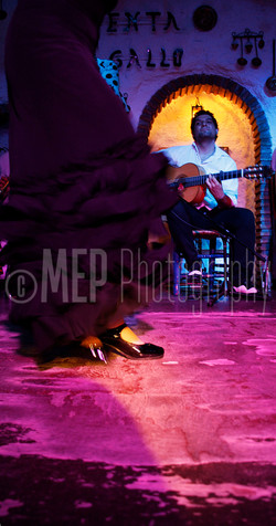 Flamenco Dancers (3).jpg