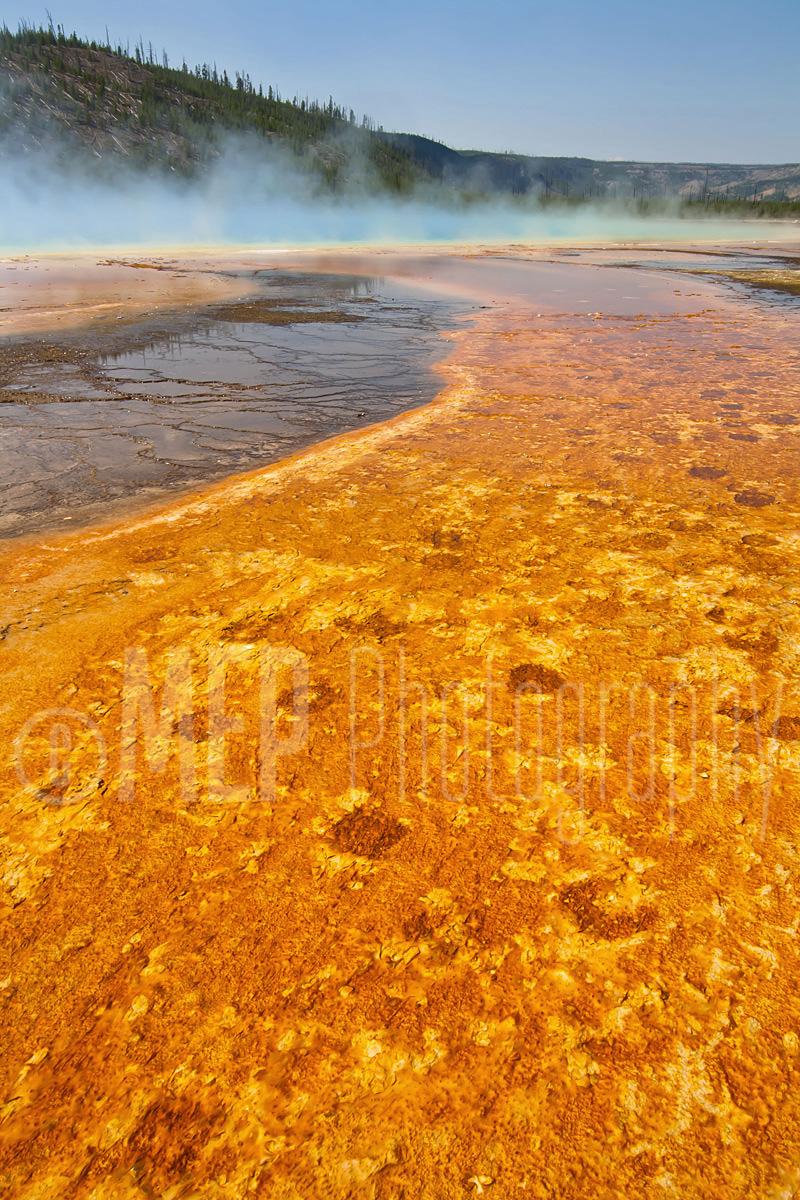 Yellowstone National Park (7).jpg