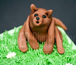 Jen's Cake Mix (8).jpg