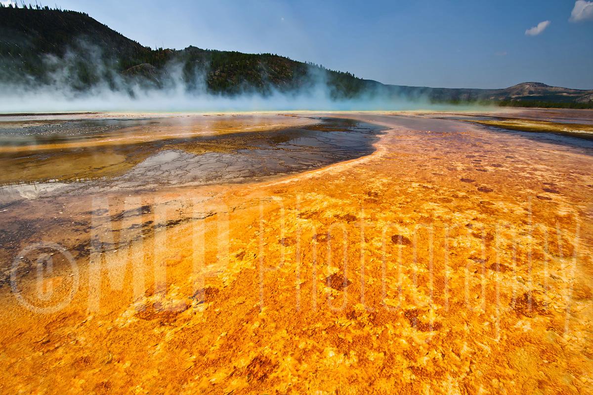 Yellowstone National Park (6).jpg