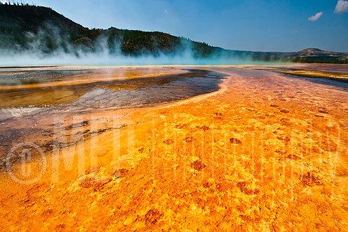 Yellowstone National Park (6)