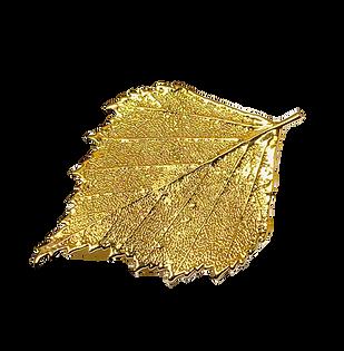 Leaf%20Brooch%202_edited.png
