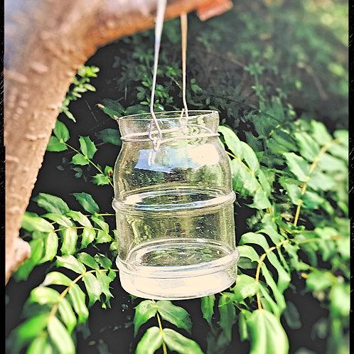 Clear Glass Jar Style Lantern