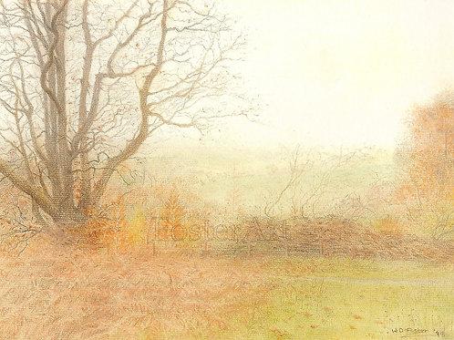 Autumn in Shropshire