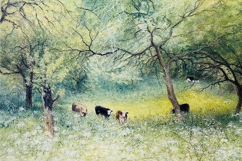 Cows amidst the orchard