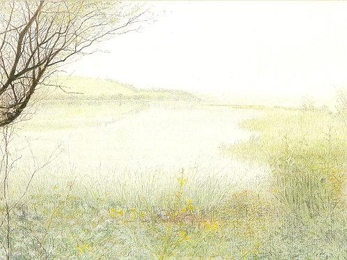 'Quiet Waters'