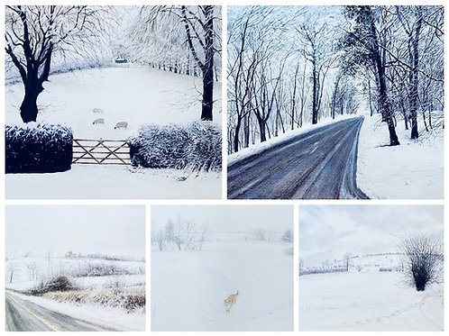 Set of 5 Winter Cards