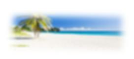 palma fa a parton beach 2.png