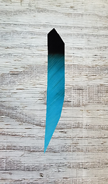 turquoise and black ET.png