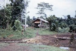 1962-1977 (114)