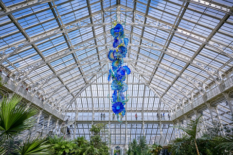 Experience a Kew Garden's Escape featuring the luminous glasswork of artist, Dale Chihuly
