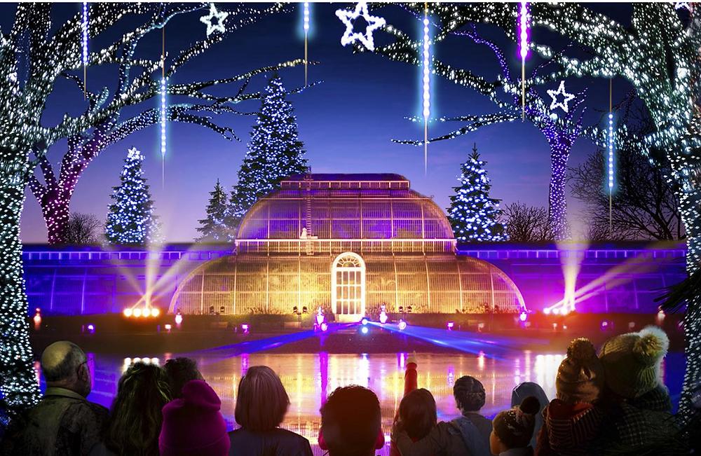 Image: Palm illuminations, Christmas at Kew, Jeff Eden