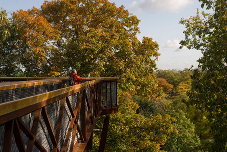 Our favourite walking routes in Richmond