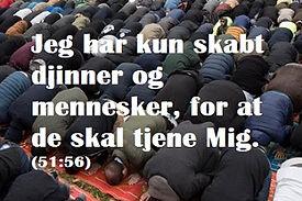 sura 51 vers 56 - meningn med livet i islam