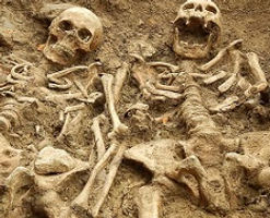 Gamle skelette.jpg