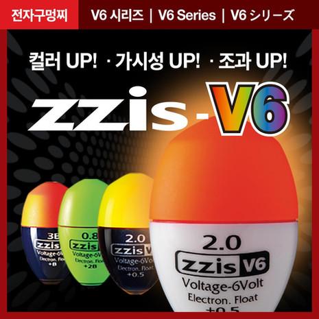 01-01_zzis-V6.jpg