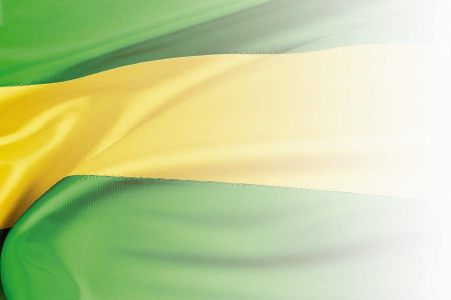bandera el oro.jpg