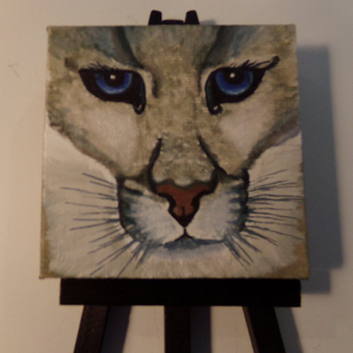 #166 blue eyed cougar 3x3 inch with easel