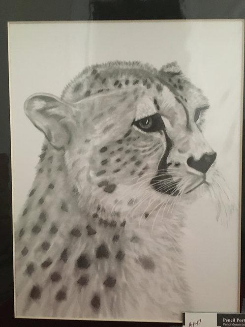 Cheetah #160 11x14 framed pencil drawing